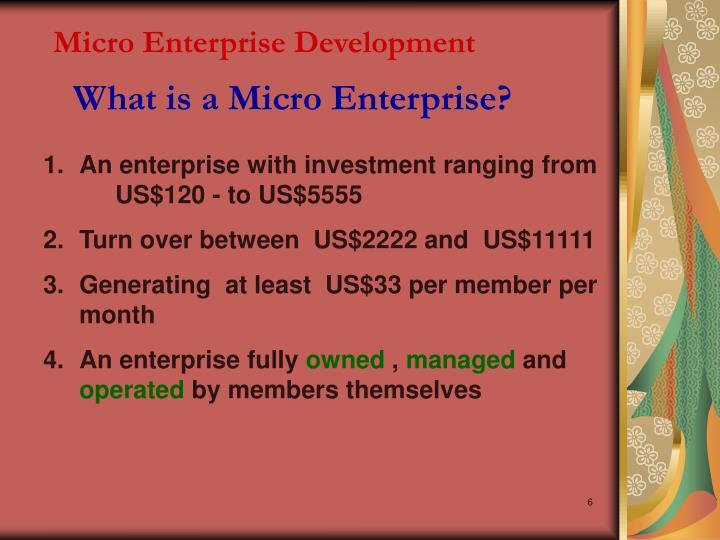 Micro Enterprise Development