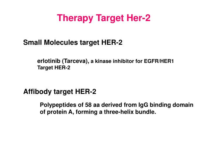 Therapy Target Her-2