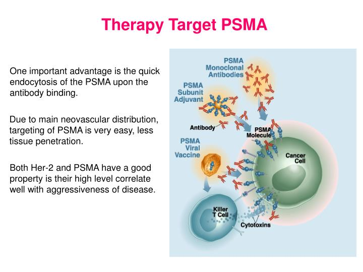 Therapy Target PSMA