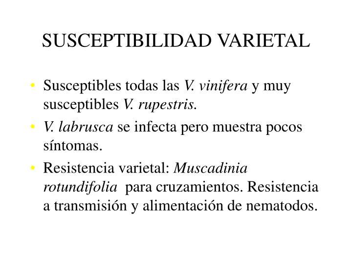 SUSCEPTIBILIDAD VARIETAL