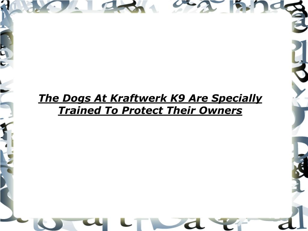 the dogs at kraftwerk k9 are specially trained to protect their owners l.