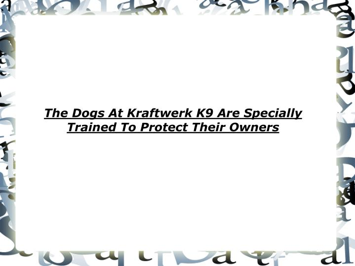 The dogs at kraftwerk k9 are specially trained to protect their owners