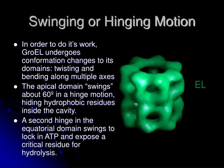 Swinging or Hinging Motion