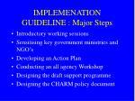 implemenation guideline major steps