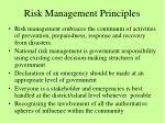 risk management principles