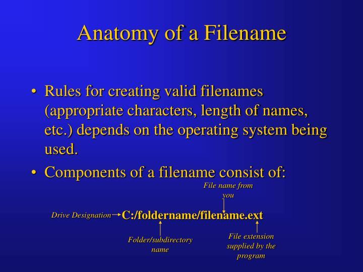 Anatomy of a Filename