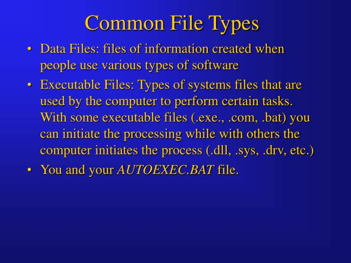 Common File Types
