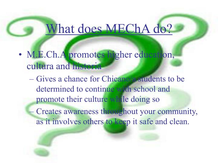 What does MEChA do?