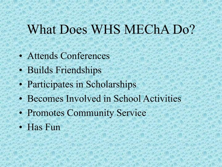 What Does WHS MEChA Do?