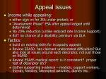 appeal issues1