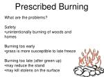 prescribed burning1