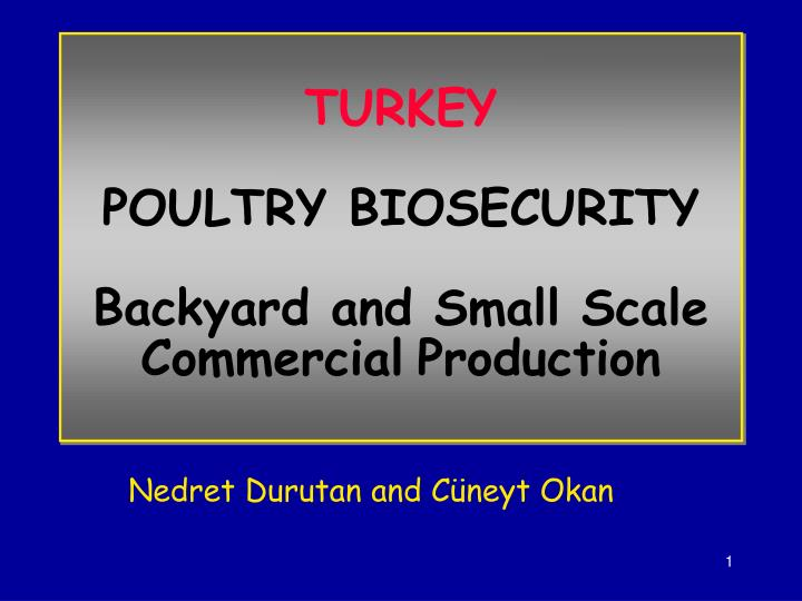 turkey poultry biosecurity backyard and small scale commercial production n.
