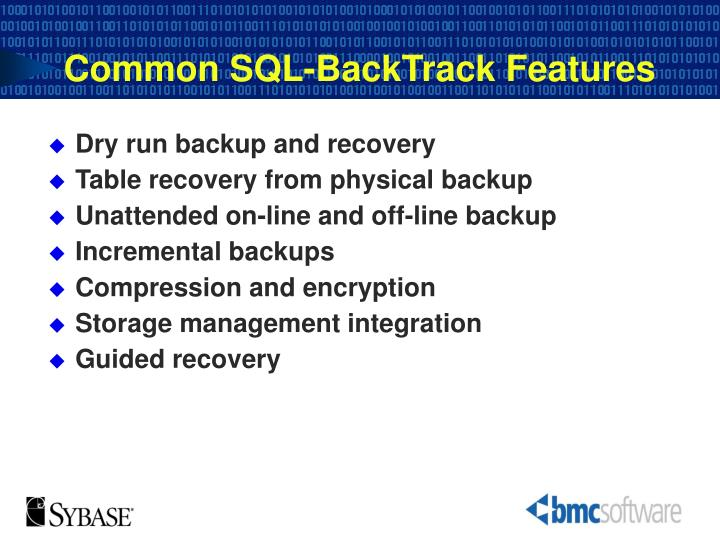 Common SQL-BackTrack Features