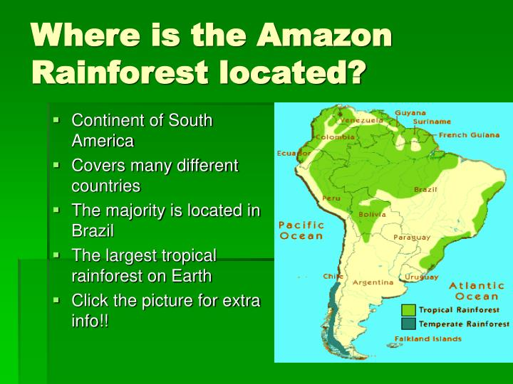 Where is the amazon rainforest located