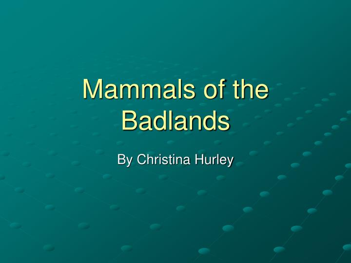 mammals of the badlands n.