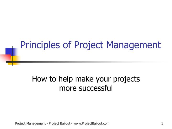 principles of project management n.
