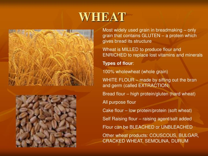 PPT - WHEAT PowerPoint Presentation - ID:1251439