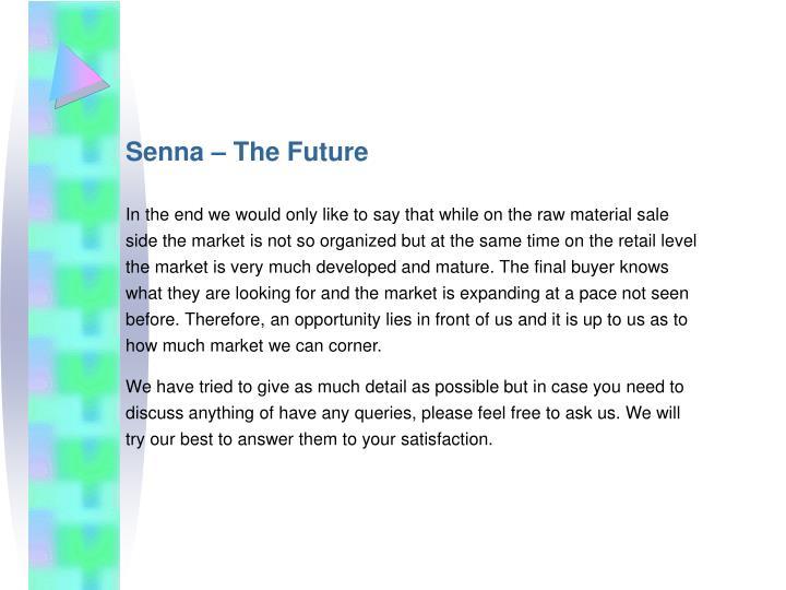 Senna – The Future