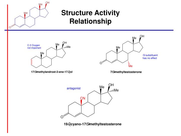 Structure Activity