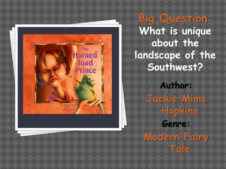 author jackie mims hopkins genre modern fairy tale n.