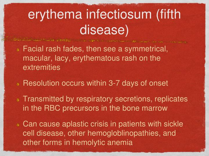 erythema infectiosum (fifth disease)
