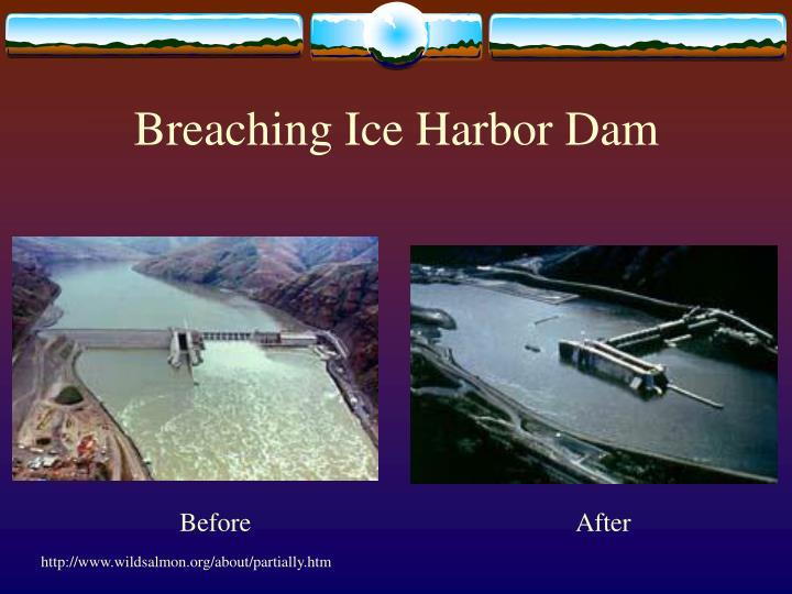 Breaching Ice Harbor Dam