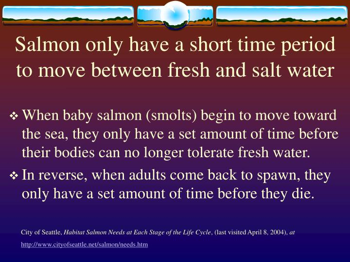 Salmon only have a short time period to move between fresh and salt water