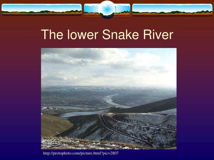The lower Snake River