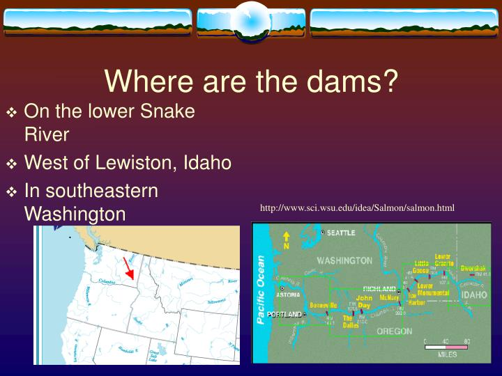 Where are the dams?
