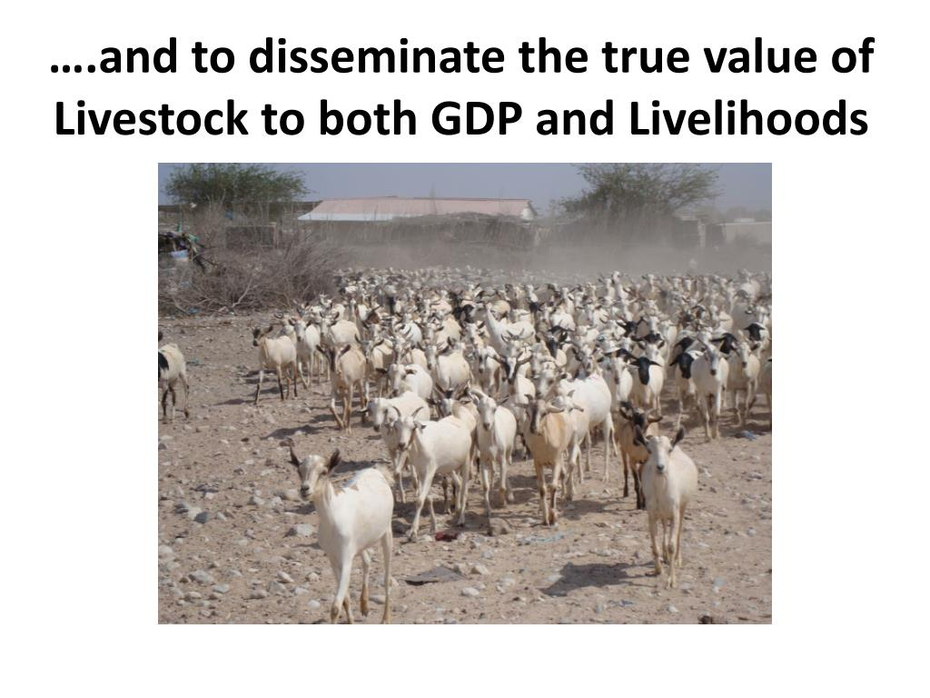 ….and to disseminate the true value of Livestock to both GDP and Livelihoods