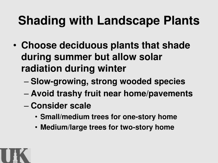 Shading with Landscape Plants