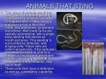 animals that sting