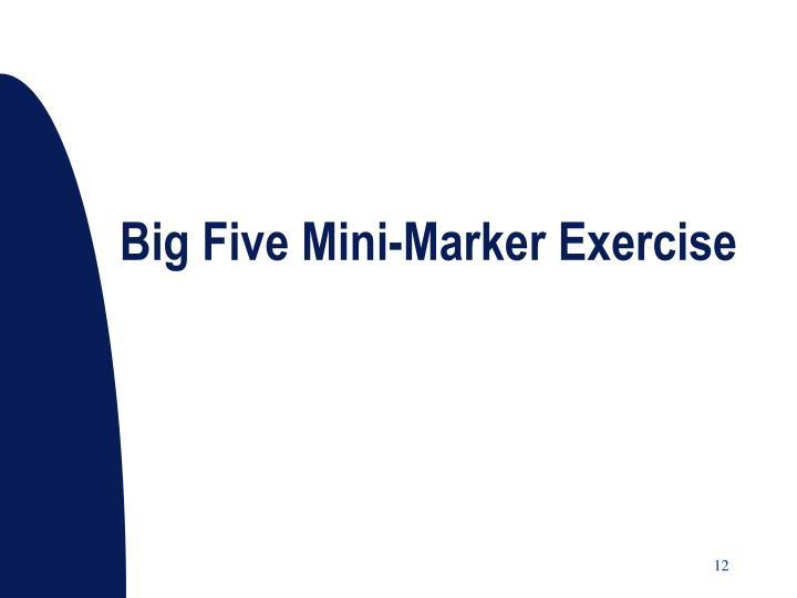 Big Five Mini-Marker Exercise