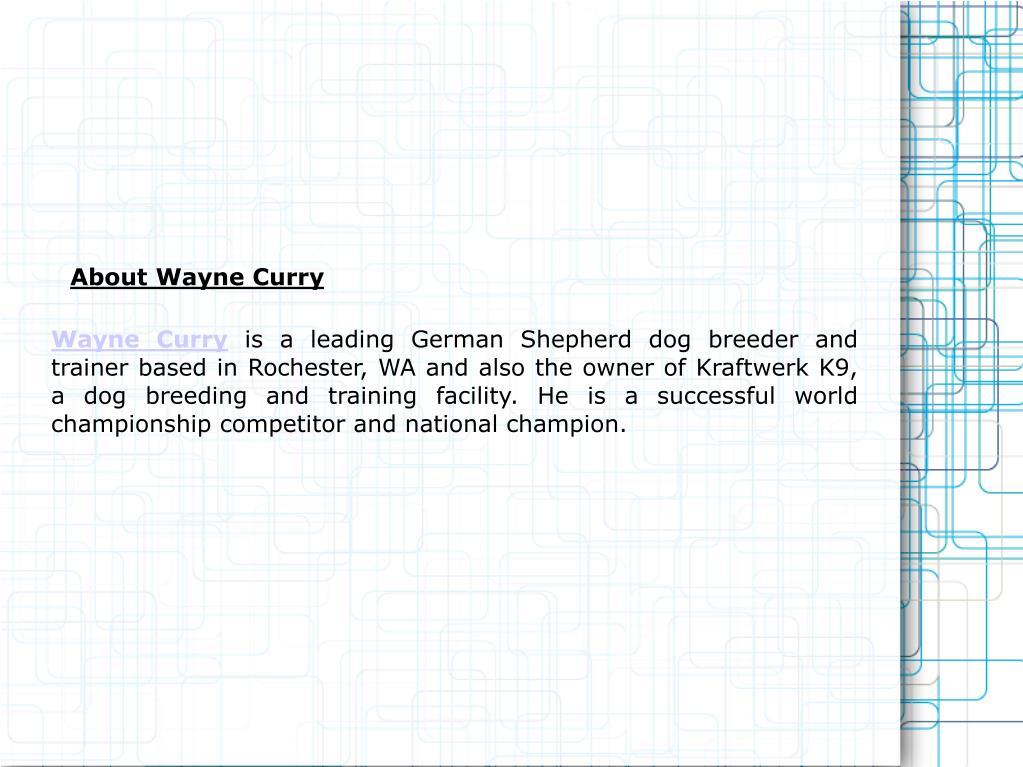 Wayne Curry