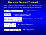 nearshore sediment transport