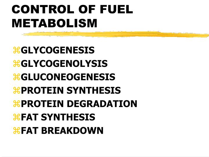 CONTROL OF FUEL METABOLISM