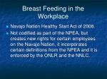 breast feeding in the workplace