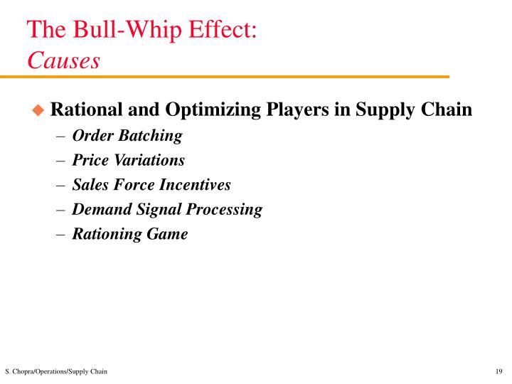 The Bull-Whip Effect: