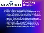 consulting services1