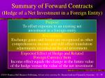 summary of forward contracts hedge of a net investment in a foreign entity