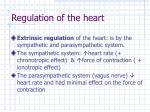 regulation of the heart1