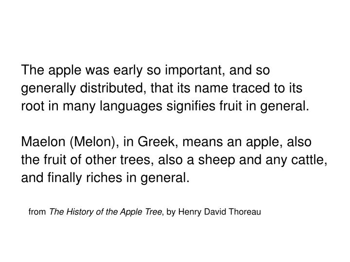 The apple was early so important, and so