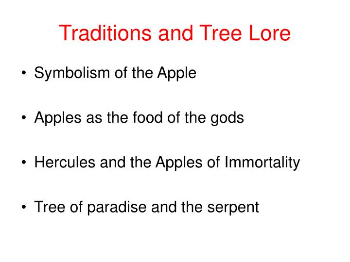 Traditions and Tree Lore