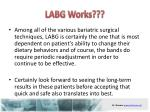 labg works