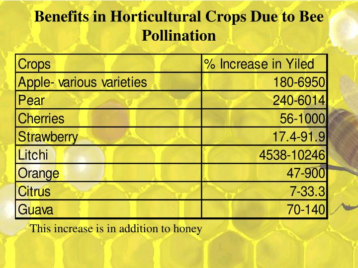 Benefits in horticultural crops due to bee pollination