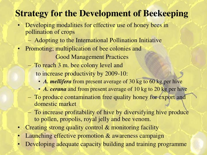Strategy for the Development of Beekeeping