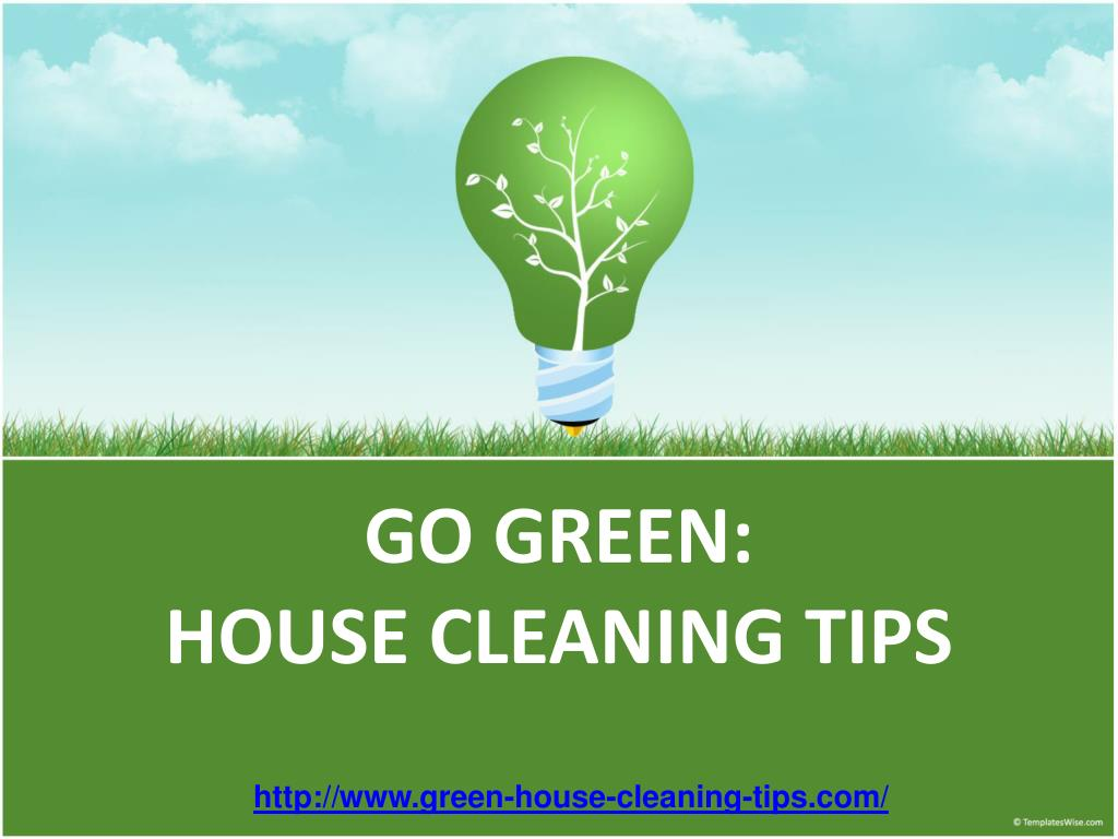go green house cleaning tips l.