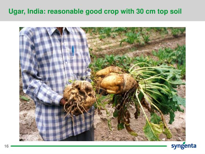 Ugar, India: reasonable good crop with 30 cm top soil