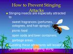 how to prevent stinging attacks