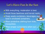 let s have fun in the sun